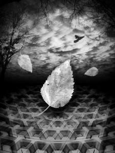Autumn Underground - Richard Smith